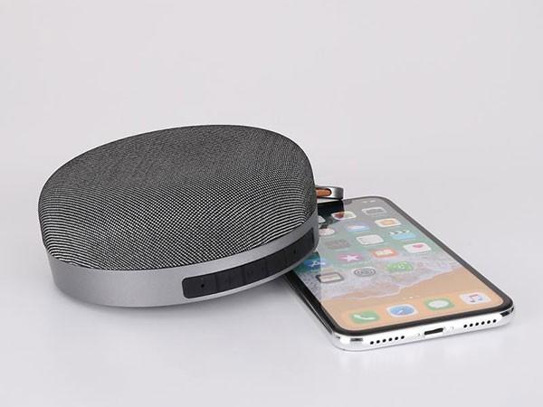 Xwave BT zvucnik,4.2,  FM Radio, MicroSD, USB2.0, Sivi